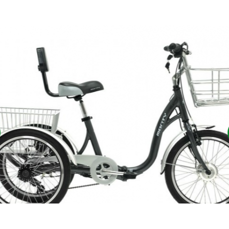 Chargeur pour Tricycle Monty E132